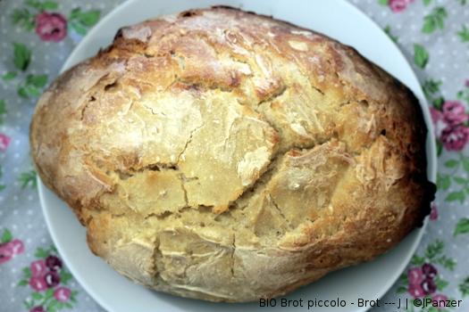 BIO Brot piccolo schmeckt gut – Brot